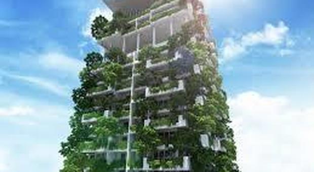 Il giardino verticale arreda le pareti esterne come realizzare quadri su balconi e terrazzi - Come realizzare un giardino verticale ...
