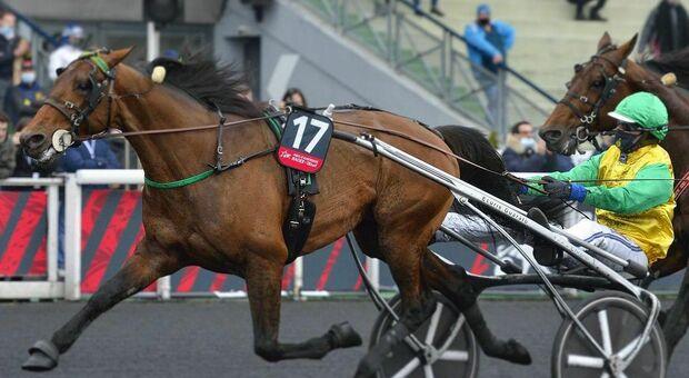 Face Time Bourbon come Varenne: bis storico al Grand prix d'Amerique a Parigi