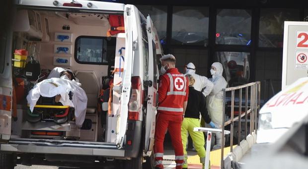Neonato morto schiacciato sull'autobus dopo una frenata, a Genova: era nel marsupio della mamma