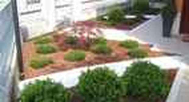 Giardino condominiale ecco le regole da rispettare - Cosa mettere al posto dell erba in giardino ...