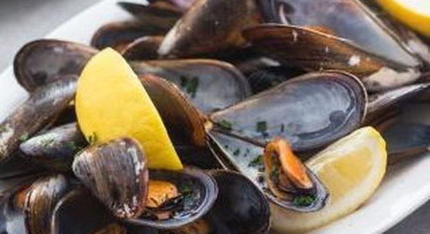 Cozze contaminate provenienti dalla Grecia: allerta alimentazione