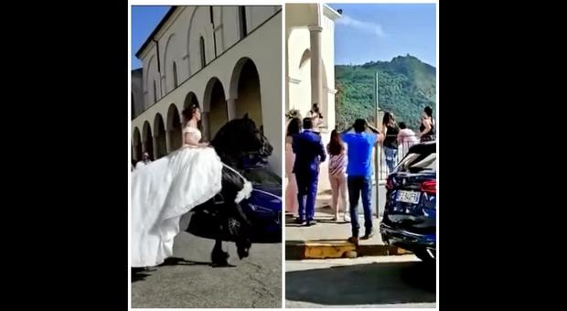 Il cavallo della sposa stramazza al suolo per il caldo (immag e video pubbl da Rinaldo Sidoli di APE su Fb)