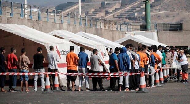 Decreto sicurezza, la mossa di Salvini e Meloni: «Passo falso della sinistra, bella notizia per noi»