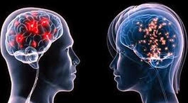 Cervello, quello dell'uomo si orienta bene nello spazio, quello della donna ha più memoria: ecco le differenze