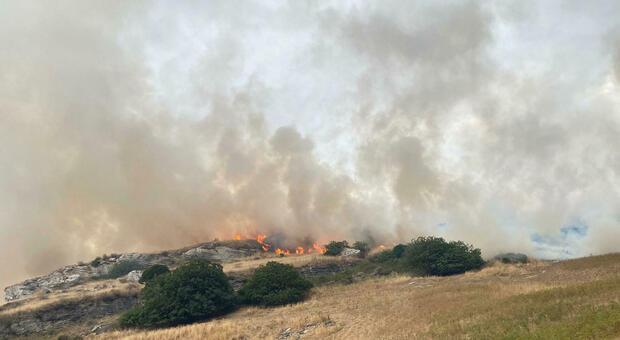 Incendi Sardegna, Oristanese devastato: la Procura apre un'inchiesta