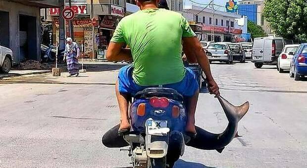 Squalo sullo scooter per le vie del centro, rabbia degli animalisti contro i pescatori (Immagine pubbl dall'associazione Houtiyat su Fb)