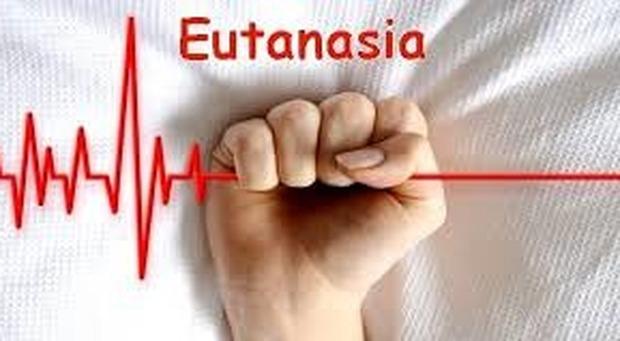 Eutanasia, nove italiani su dieci favorevoli alla legalizzazione secondo un sondaggio