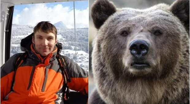Turista mangiato vivo da un orso davanti agli amici: «Ha dilaniato il suo corpo»