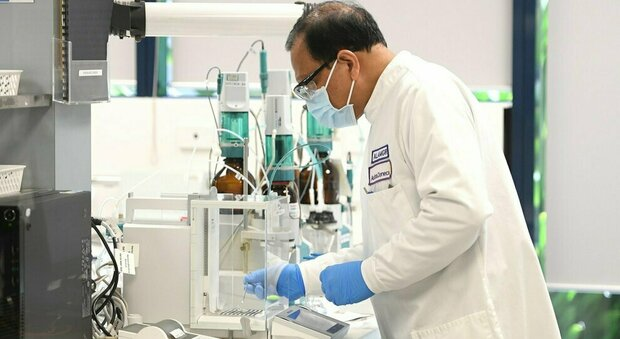 Covid Italia, lo studio: «Circolano cinque varianti del virus. Grande capacità di replicarsi»