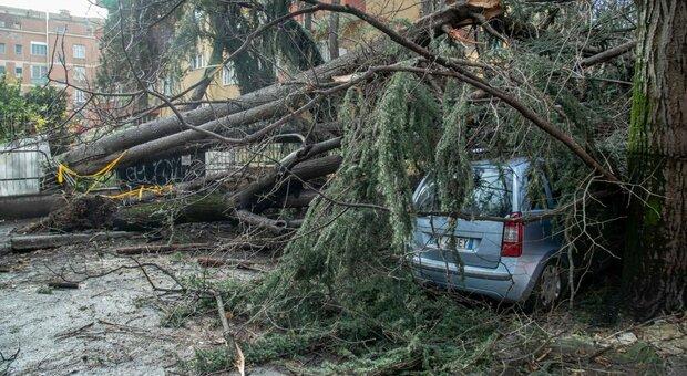 Maltempo, scuole chiuse nel Modenese: attese raffiche di vento fino a 100 all'ora