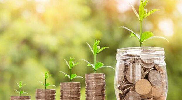Risparmio, Censis: green e responsabili, gli investimenti finanziari che piacciono agli italiani