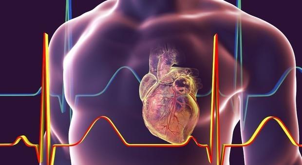 Coronavirus, mortalità per infarto triplicata durante la pandemia. Gli esperti: «Rischiamo più morti che per il Covid»