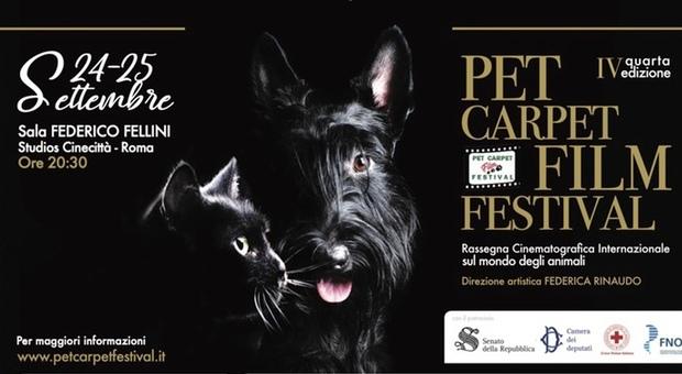 Pet Carpet Film Festival, kermesse cinematografica sul mondo animale: conducono Jimmy Ghione e Edoardo Stoppa