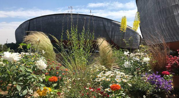 Auditorium Parco della Musica, al via il Festival del verde e paesaggio: cultura corsi e mestieri in mostra