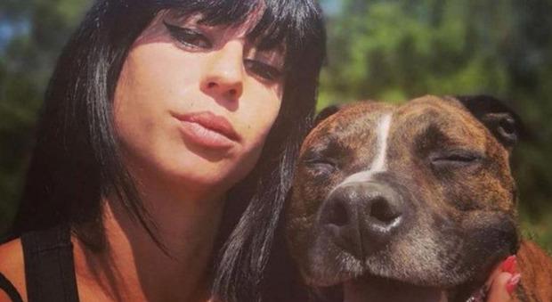 Cane sbrana la proprietaria incinta, il compagno di lei difende l'animale: «Non va abbattuto»