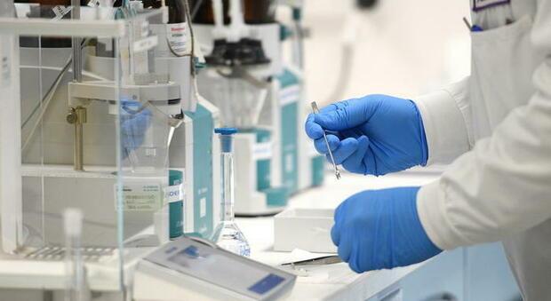 Vaccino Covid, morto volontario di AstraZeneca/Oxford in Brasile