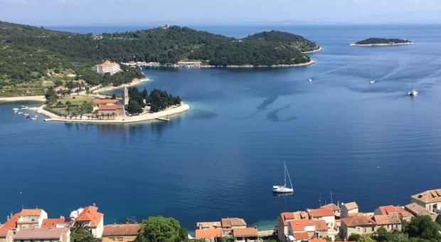 Da Dugi Otok a Ugljan, fino a Vis: vacanza alternativa in Croazia