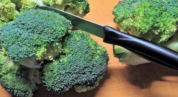 Tumori: broccoli un aiuto naturale, studio spiega perché