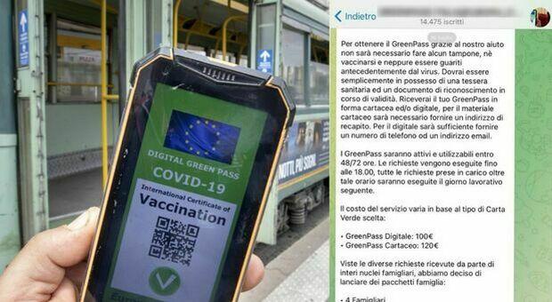 Green Pass falsi venduti online, la truffa su Telegram: 100 euro a certificato e pacchetti familiari