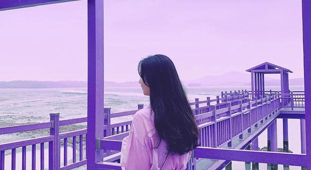 """Foto Instagram della """"Purple island"""" (profilo di @havehalalwilltravel)"""