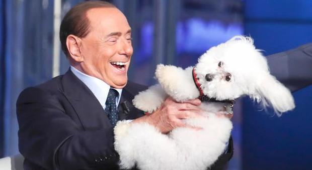 Umbria, elezioni regionali, Berlusconi: «Dudù capisce più di certi politici»