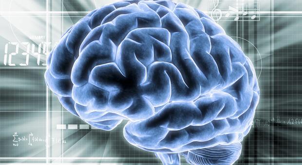 """Parkinson, ultrasuoni """"sparati"""" sul cervello fermano i tremori"""