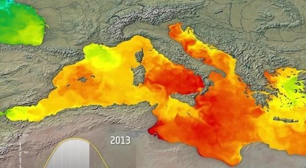 Mediterraneo sempre più caldo, +2 gradi in profondità: allarme Jonio e Adriatico