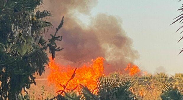 Teramo, vasto incendio a ridosso della ferrovia: le fiamme minacciano le case vicine