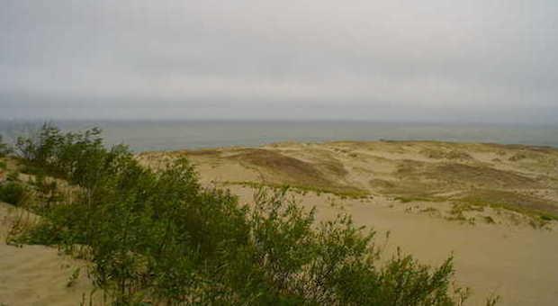 In Lituania, sulle spiagge incantevoli della penisola curlandese