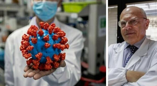 Anticorpi monoclonali, in Toscana al via test sull'uomo. Il virologo Galli: «Efficacia sconosciuta su varianti»