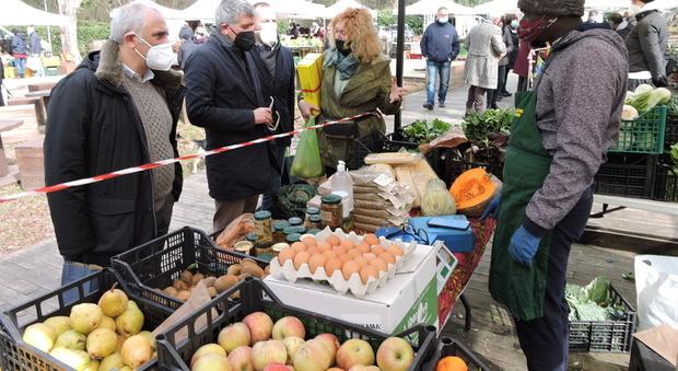Castelli Romani, l'agricoltura scopre il boom online: esplosione di richieste per la vendita