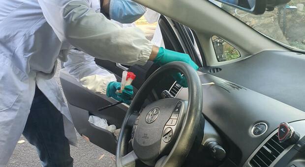 """Roma, arrivano i taxi """"Covid free"""": sanificazione ad ogni corsa e il cliente può verificare la pulizia con un'app"""