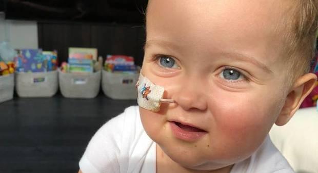 Bimbo di un anno e mezzo cerca donatore compatibile di midollo osseo