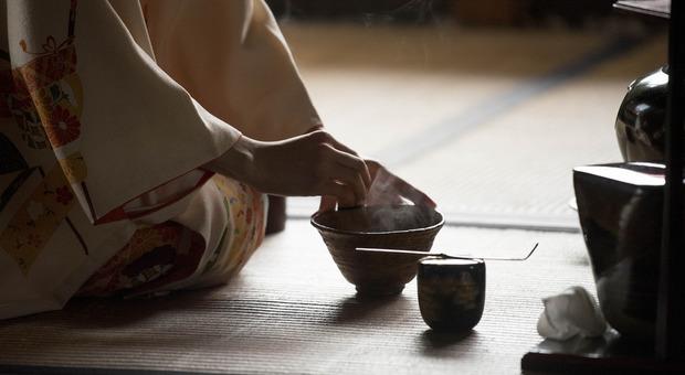 perdere peso olio dell albero del tè
