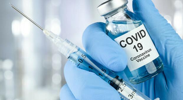 Vaticano, moralmente accettabile l'uso di vaccini prodotti da feti abortiti