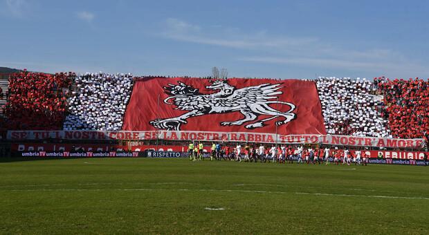 Il nuovo stadio Curi può crescere in tre mosse: capienza in base alle fortune del Perugia