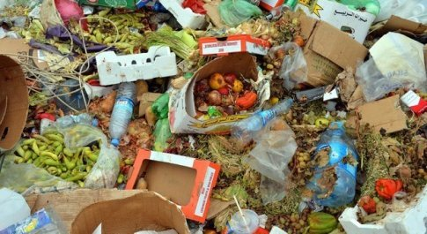 Spreco alimentare: italiani gettano nel cassonetto 65 chili di cibo all'anno