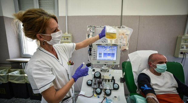 Plasma iperimmune anti Covid-19, pronte 250 unità. Lo studio su 60 pazienti