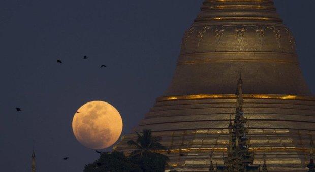 Superluna, luna blu e luna rossa: tutto in un colpo solo la notte del 31 gennaio