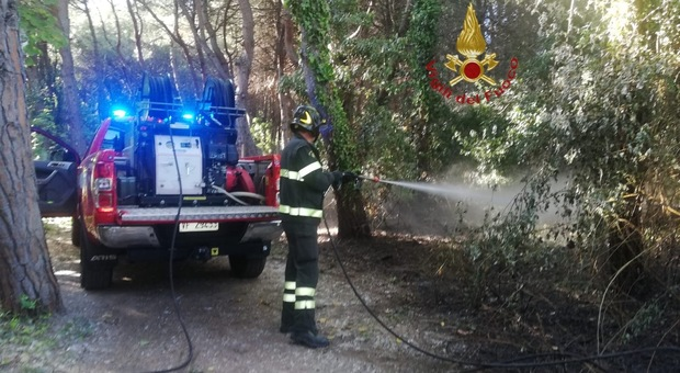 Pescara, secondo incendio nella Pineta dannunziana: forse c'è un piromane