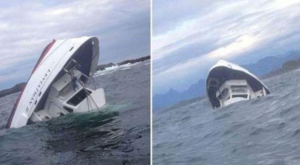 Canada, affonda barca per avvistamento balene: 5 morti e un disperso