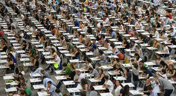 Fine dell'esame di Stato: laureati subito al lavoro