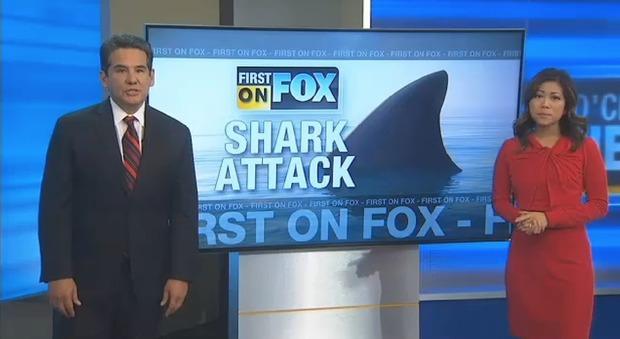 Usa, surfista ventinovenne attaccato da uno squalo