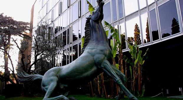 Il Cavallo della Rai