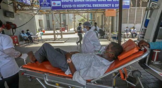 Fungo nero spaventa l'India, oltre 40.000 casi. L'85% dei contagiati aveva avuto il Covid