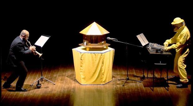 Vercelli, le api adesso si esibiscono in concerto