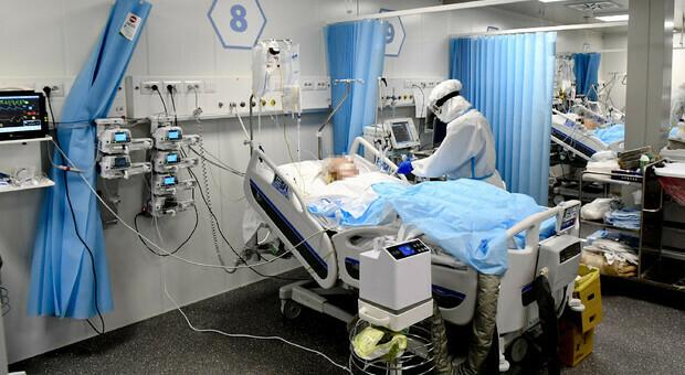 No vax, l'ordine dei medici: «In Italia 728 sanitari sospesi per non essersi vaccinati»