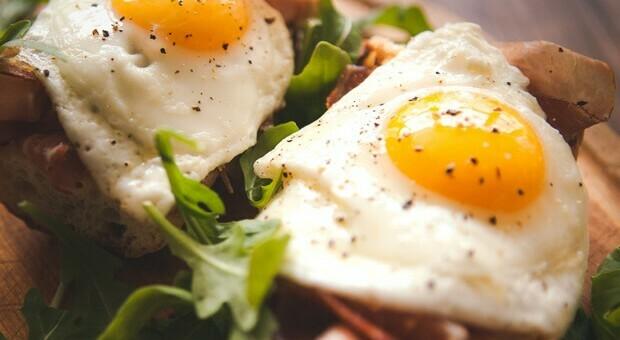 Con una o due uova al giorno il rischio diabete aumenta del 60%
