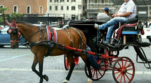 Roma, stop alle botticelle in strada: ora cavalli solo nei parchi