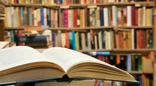 Libri (foto ilmessaggero)